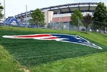 New England Patriots / by Maria Rebelo