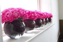 Pink and Black / by Maggie Cruz