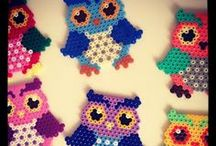 Owls Lovers