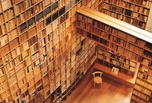 Libraries are the most wonderful places / The most beautiful temples for reading...
