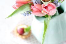 Flowers / Plants / Garden