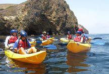 Explore San Diego / #discoversandiego #travel #sandiego #parenting #visitcalifornia #babysitting