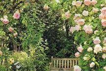 Pour vous!! / Titi  Laurent voici mes idées les plus folles pour votre maison et votre jardin