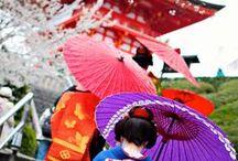 Kraj Kwitnącej Wiśni / Po obejrzeniu naszej tablicy poświęconej Krajowi Kwitnącej Wiśni zapragniesz kupić bilety lotnicze do Japonii. Ktoś się oprze tym zjawiskowym krajobrazom, tunelom z drzew kwitnących wiśni, kocim kawiarniom, ceremonii parzenia herbaty i posiłkom w pudełkach bento wyglądającym jak małe dzieła sztuki?