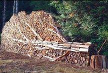BOIS / Bois et design Bois et architecture Le bois dans tous ses états