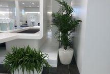Macetas de diseño / Decora tu casa o jardín con las últimas novedades en diseño con nuestras macetas de interior y exterior.