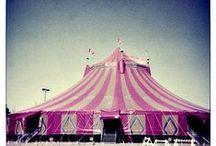everything circus