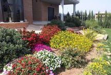 Jardines Propios Les Solaes / En este álbum podremos ver el antes y después de muchos jardines diseñados por nuestra empresa, Garden Les Soales.   Espero que os gusten.