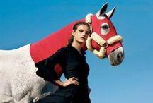 Equestrian fashion / Vogue, allure, life style, equestrian meets fashion.
