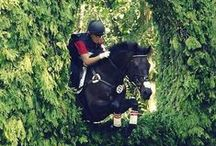 Eventing / Cross country, x competitions equestrian adrenaline