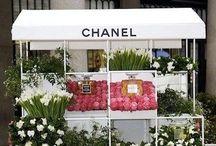 flower store / by Kasha Design