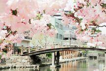 日本。大好き。 / by E