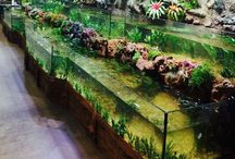 Amazon Riverbank Tank / 40 Foot Long Double Glass Tank with Artificial 3D Backgrounds displayed at the Aquatic Experience show 2015.