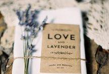 Lavendel ♥♥