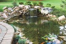 Water Gardens and Water Features