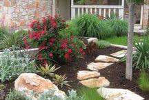 Gardening in San Antonio, TX