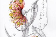 Doodles, Zentangles