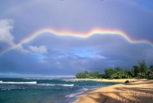 Rainbows / by Valentin Brekher