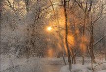 Winter / by Valentin Brekher