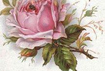 Vintage štýl kvety (flowers) / Obrázky použiteľné na rôzne druhy ručných prác ako je dekupáž,transfer na polymérové hmoty,šperky a prívesky zalievané krištáľovou živicou,kartičky a pod.
