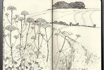 Sketchbook - skissebok