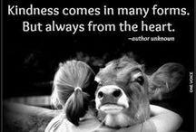 Love Animals / Vegetarians, vegans, love animals
