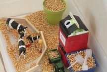 Farm Theme Fun / Crafts, books, activities and more for teaching a farm unit for preschool or kindergarten #farm #preschool #kindergarten