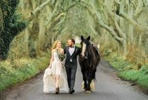 FairyTale Themed Wedding / If you're going to pin everything... Then you might as well follow..