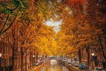 AUTUMN , my favourite season / I love the colors of autumn...
