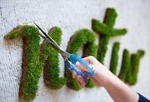 ✿ Eco Ideas ✿ / www.organicnaturalpaint.co.uk