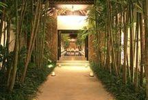 ✿ Exotic Garden ✿ / www.organicnaturalpaint.co.uk