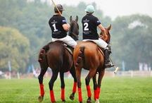Polo / International to Low Goal and chukka's in between