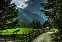 ✿ Nature's Beauty  ✿ / www.organicnaturalpaint.co.uk