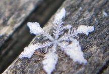 ☃ Winter ☃ / Beautiful season