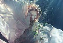 Ophelia / doubt thou the stars are fire