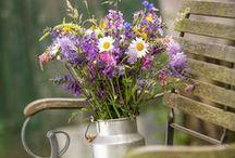 Garten / Schönes und Inspirierendes für das eigene grüne Paradies