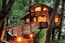 Baumhäuser / Man kann ja mal träumen, zum Beispiel von Baumhäusern – einem gemütlichen Ort, weit oben in den Baumwipfeln