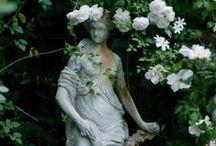 Gethsemane / A midsummer secret garden
