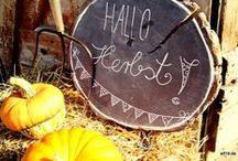 Herbst / Herbst – Kürbisse, Kastanien, buntes Laub, kräftiger Wind und vieles mehr bringt die dritte Jahreszeit mit sich.