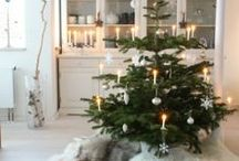 Am Weihnachtsbaume / Schöne Anhänger, verpackte Geschenke, glänzende Lichter – ein Weihnachts- oder Christbaum gehört zum Fest aller Feste, wie der Schnee zum Winter