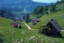 Schwarzwald / Herrliche Impressionen aus dem Schwarzwald (Baden-Württemberg)