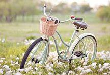 Geliebter Drahtesel / Mit dem Fahrrad unterwegs
