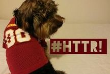 Redskins TAILgaters / Our fans sent in these great photos of their Redskins loving pets! If you want to see your pet on Redskins TAILgaters, Instagram a picture with the tag #RedskinsPets. / by Washington Redskins