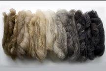 Wool to Yarn