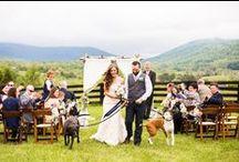 WEDDING // ENGAGEMENT / Wedding planning, engagement photos and more!