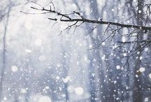all things winter & christmas