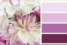 Colors / Színek