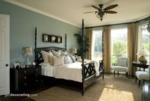 Room Colors and Decor Ideas / by Patricia Wayne Simms