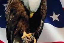I am a proud AMERICAN