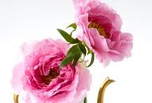 The prettiest of Flowers / by Melissa Allen